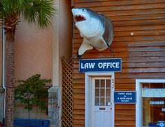 Shark-Attorney