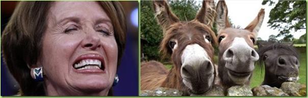 nancy and her donkeys_thumb[1]