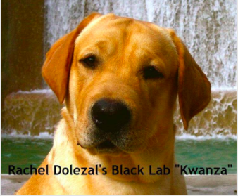 Dolezal's Black Lab