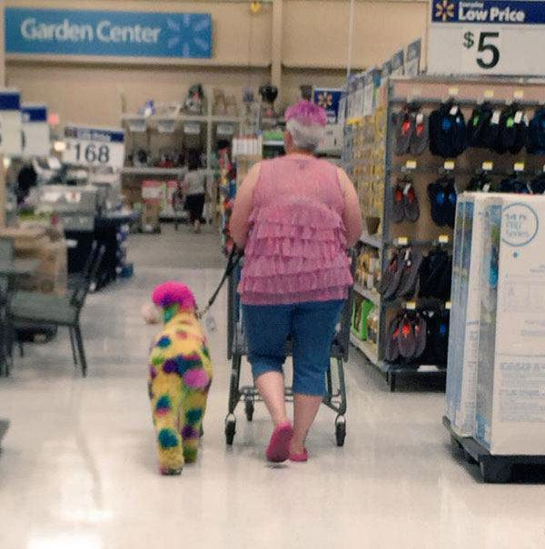 meanwhile-at-walmart-18-photos-12