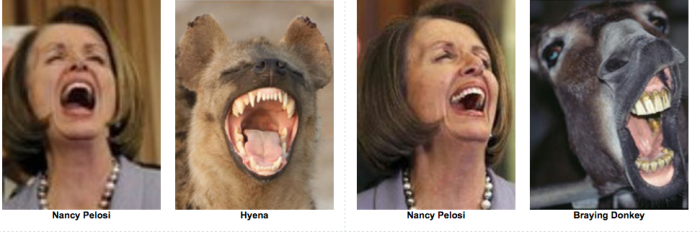 Nancy P. Lousy Separated at Birth
