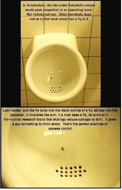 fly in the toilet