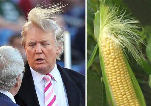 trump-separated at birth