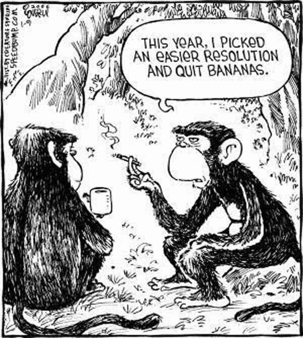 Resolutions:Bananas