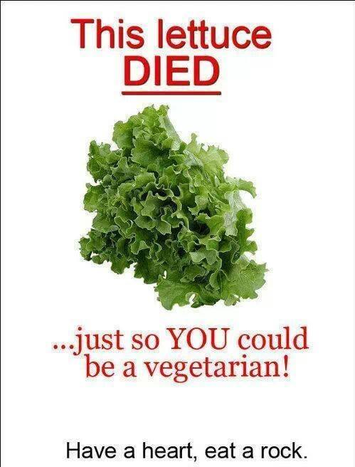 Lettuce died so you could be vegetarian