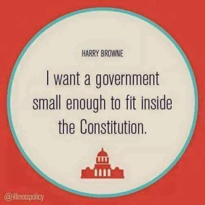 Gov't fit in Constitution