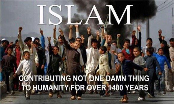Islams-contribution-to-humanity