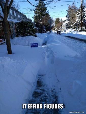Sanders Snow Drift