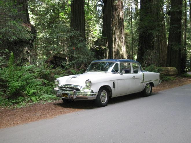 Uncle Tilden - '55 Studebaker Champion