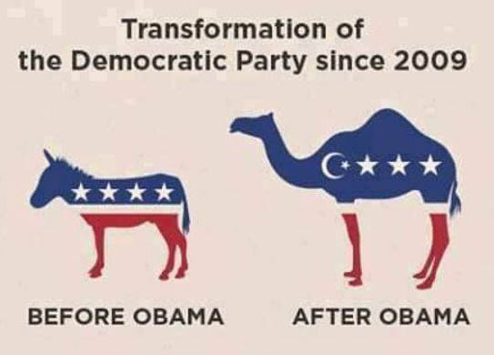Democrat Logo after Obama