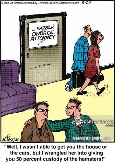Divorce Attorney,