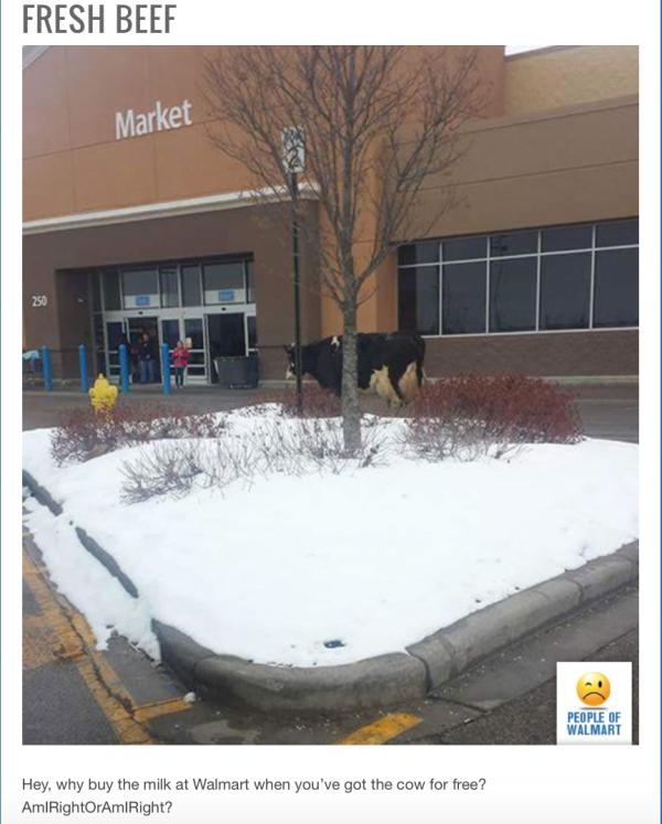 Walmartian:No Bull