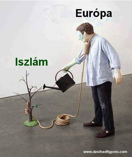 Europe-Islam-tree-rope