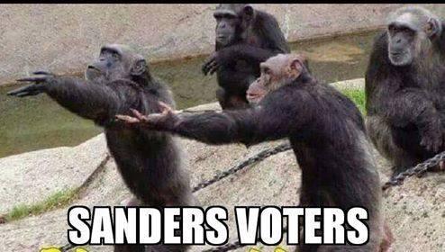 Sanders voters