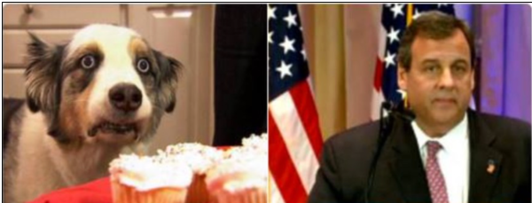 Separated at birth:Christie