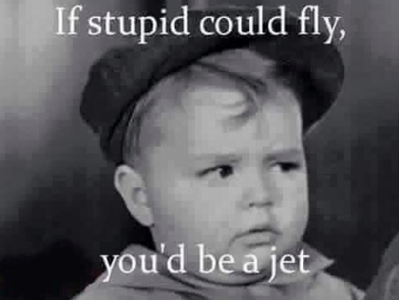 Snark-if stupid could fly