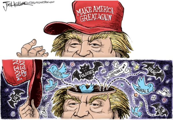 Trump-crazy-ideas
