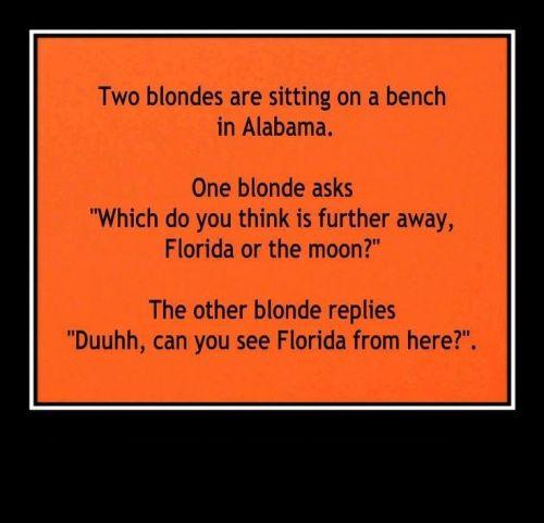 Blonde_Florida_Moon