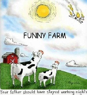 funny_farm