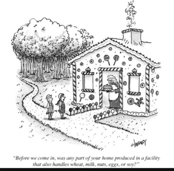 gluten-Free-gingerbread-house