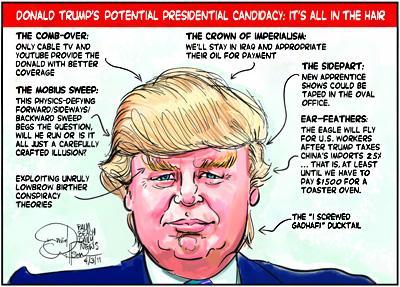 Trump_Hair