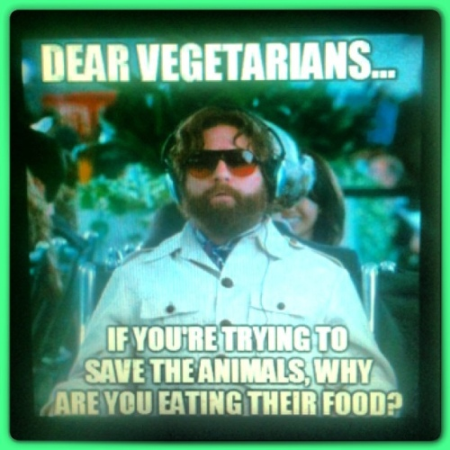 Vegetarians_Save_the_animals