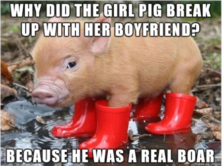 Groaner-Real_Boar