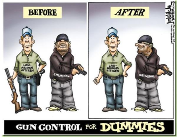 Gun_Control_for_Dummies