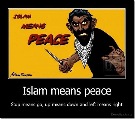 Islam-Means-Peace-toon_thumb1