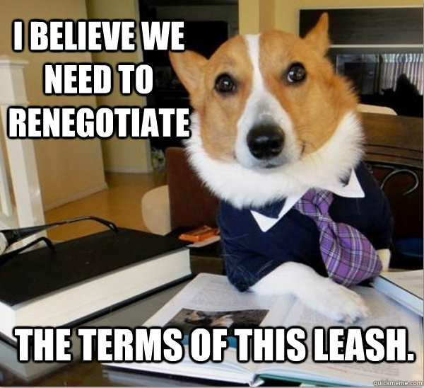 Lawyer-Dog-Leash.png
