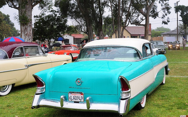 56 Clipper Custom-hdtp-rear