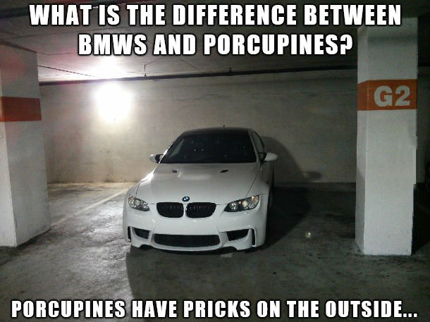 bmws-and-porcupines
