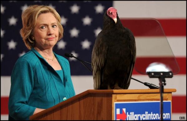 hitlery-bird