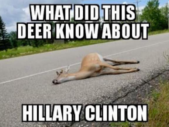 hitlery-dead_deer