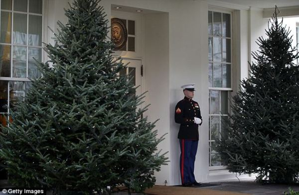 marine-sentry-at-white-house