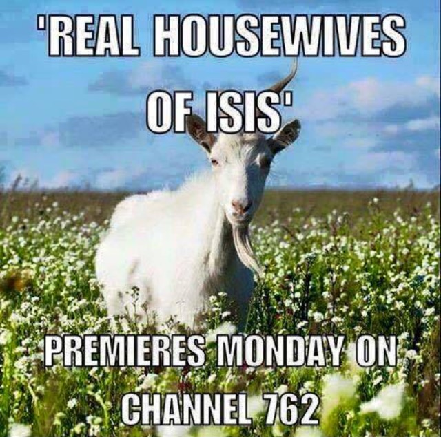 housewives-of-isis
