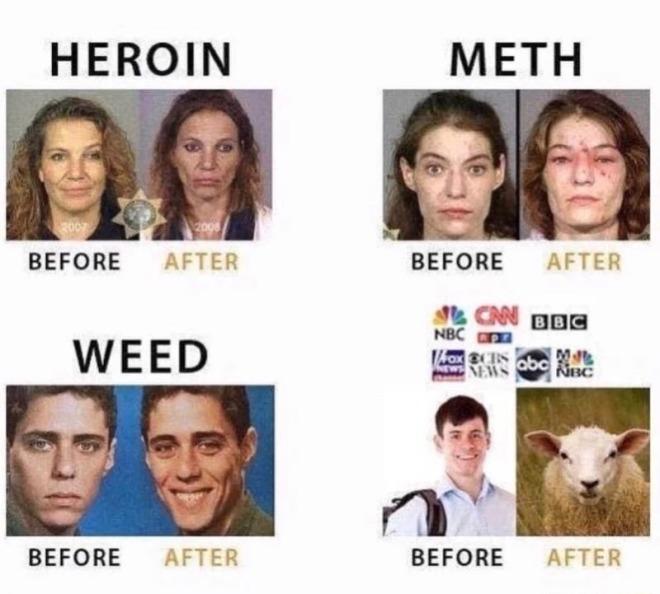 media-drug