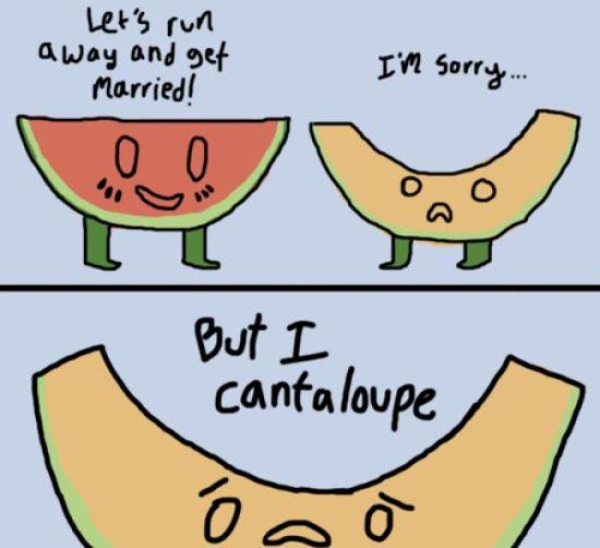 pun-cantaloupe