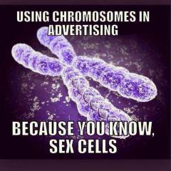 pun-sex-cells