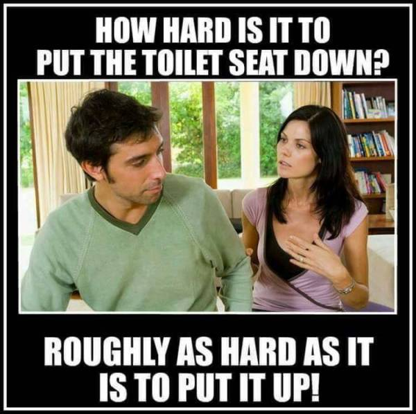 toilet-seatjpg