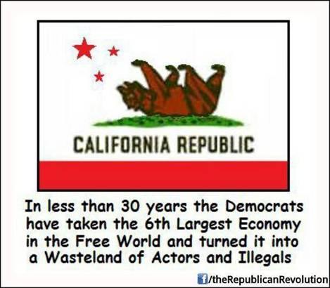 crazifornia-illegals