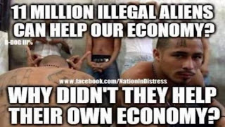 criminal-aliens-not-illegal-immigrants