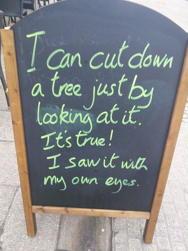cut-a-tree