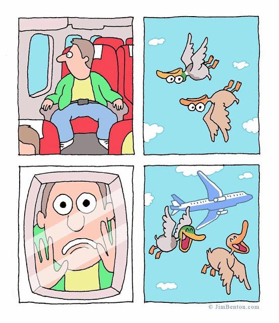 duck_flying_fun