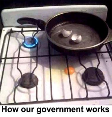 how_government_works