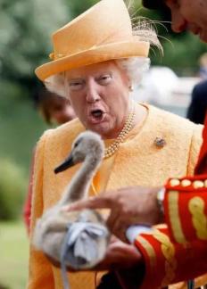 queen-trump16