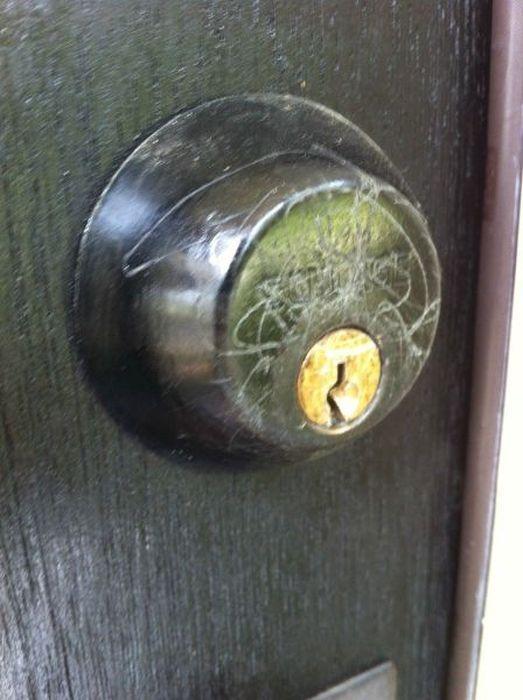 Irish_door