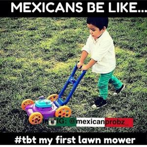 Mexican lawn mower
