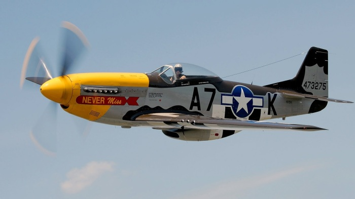 p-51-mustang-warbird