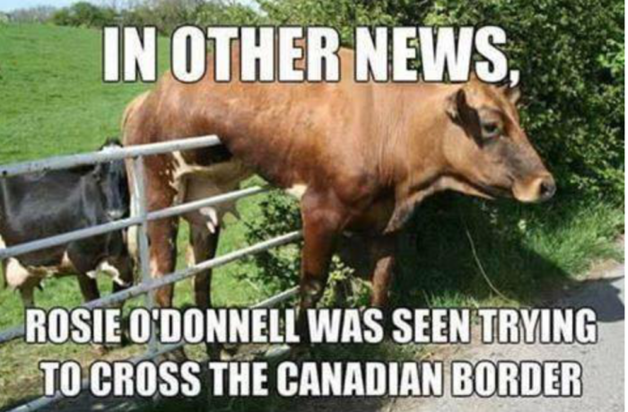 rosie-o'donnell-canadian-border
